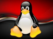 Best Linux Distros For Old Computers